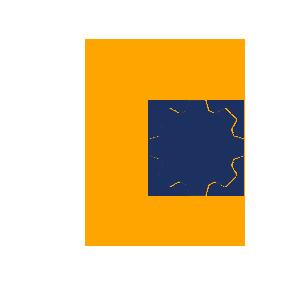 Custom Application Development Solutions
